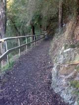 path-morguefile