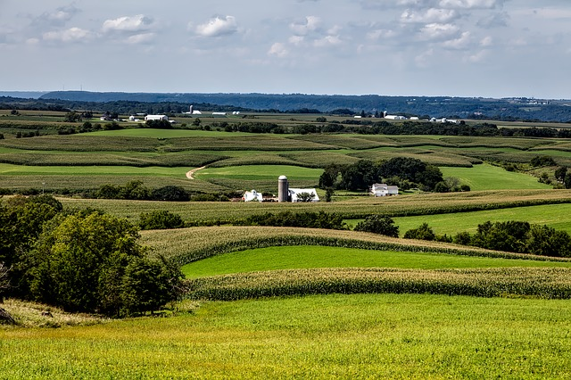 Campo agricolo. Immagine Pixabay